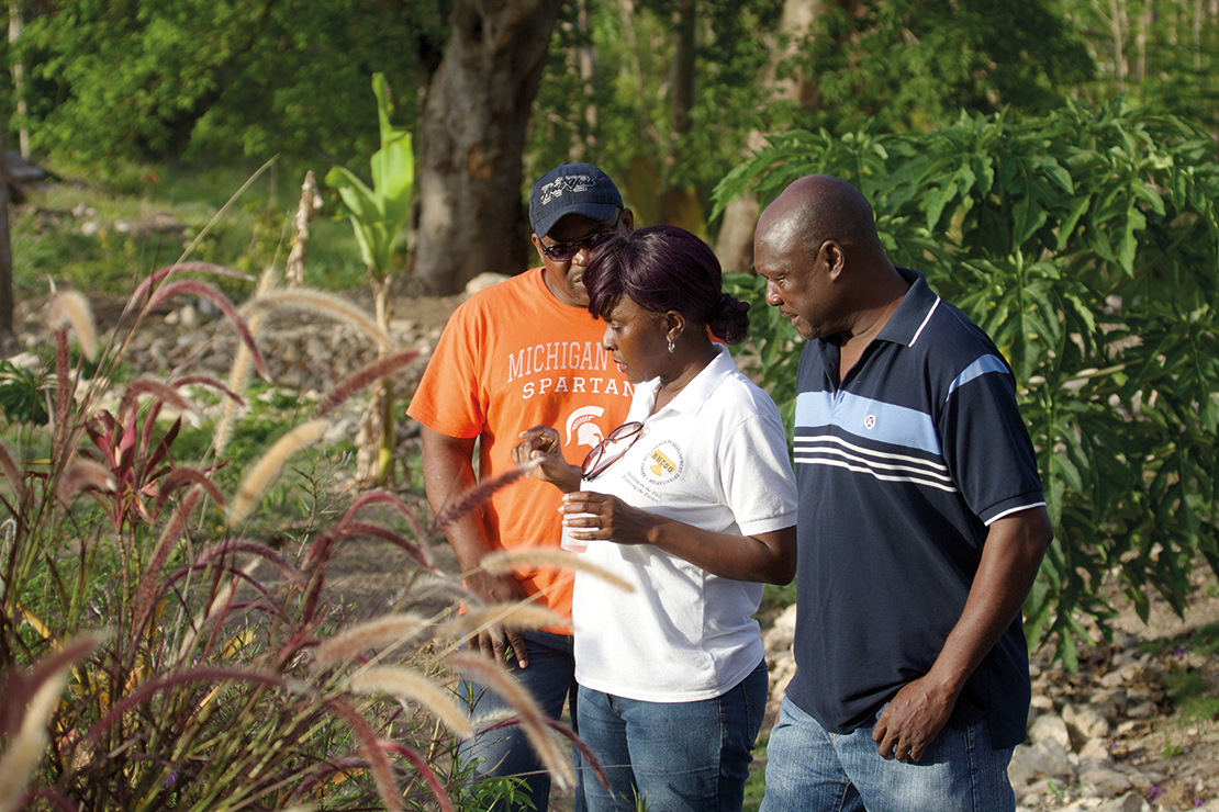 Sharing information on plants near the Barnes Hill community reservoir, Antigua and Barbuda. Credit: Timothy Payne.