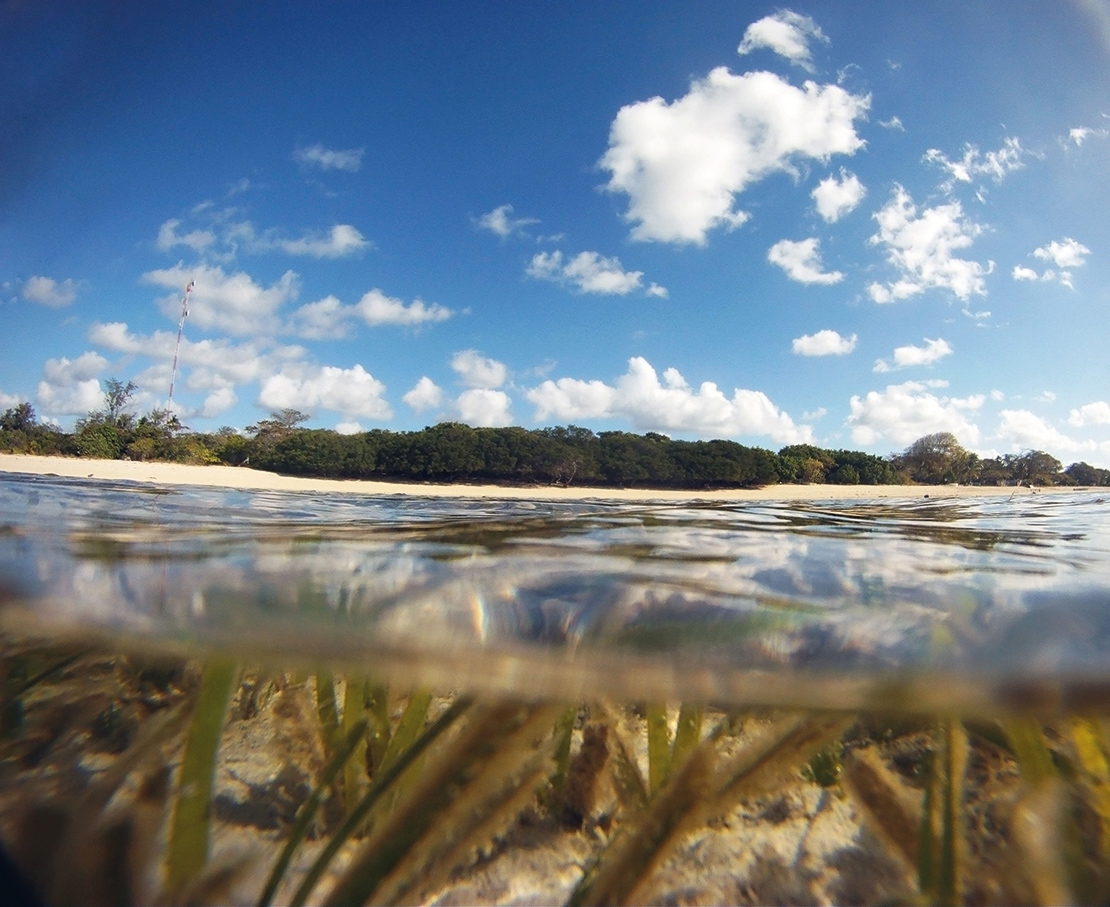 Seagrasses (visible here at Masig Island) are vital to the biodiversity of the Torres Strati, supporting a wide range of marine life. Credit: Suzanne Long.