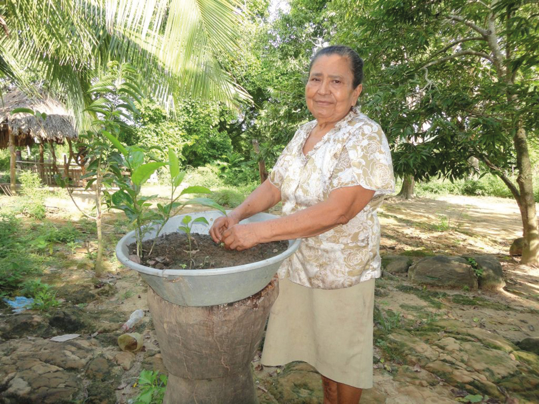Carmen Tirado tending to seedlings in the community of Flores de Mochá. Credit: CEPALC.