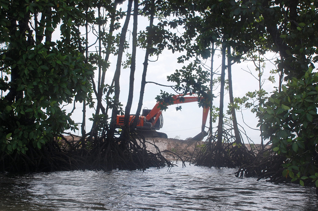 Mangroves being destroyed for shrimp farming in Sabah, Malaysia. Credit: Alice Mathew.