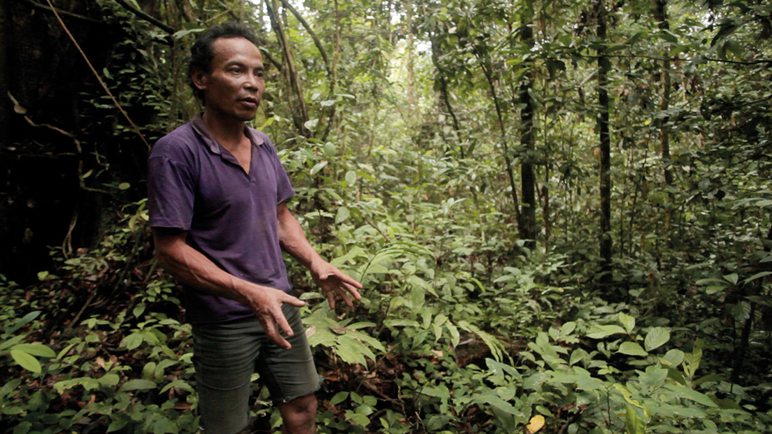 A man explaining the use of plants for medicine in Long Isun, Indonesia. Credit: Angus MacInnes.