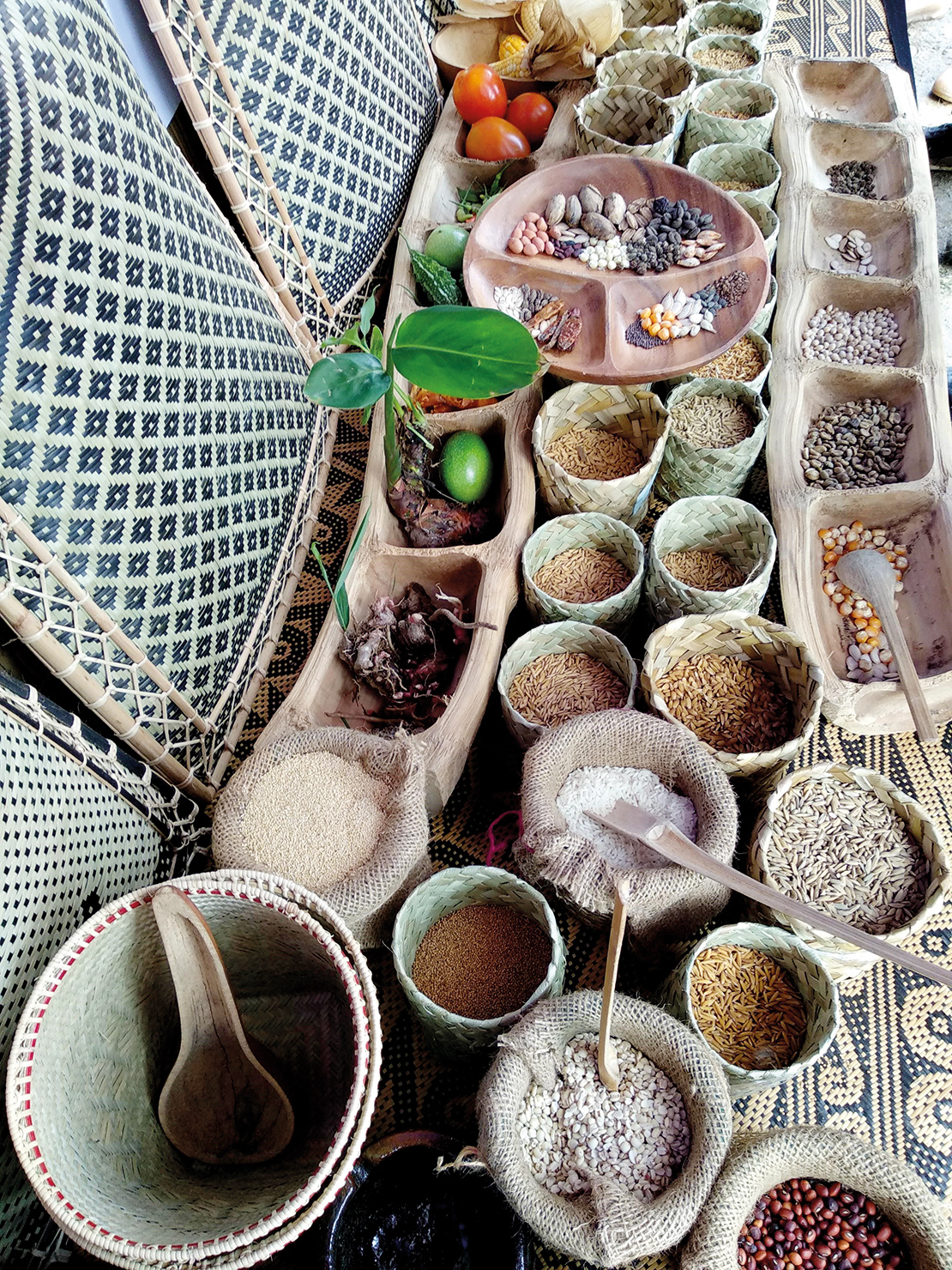 Foods and seeds from the Krayan Highlands. Credit: Ellias Yesaya.