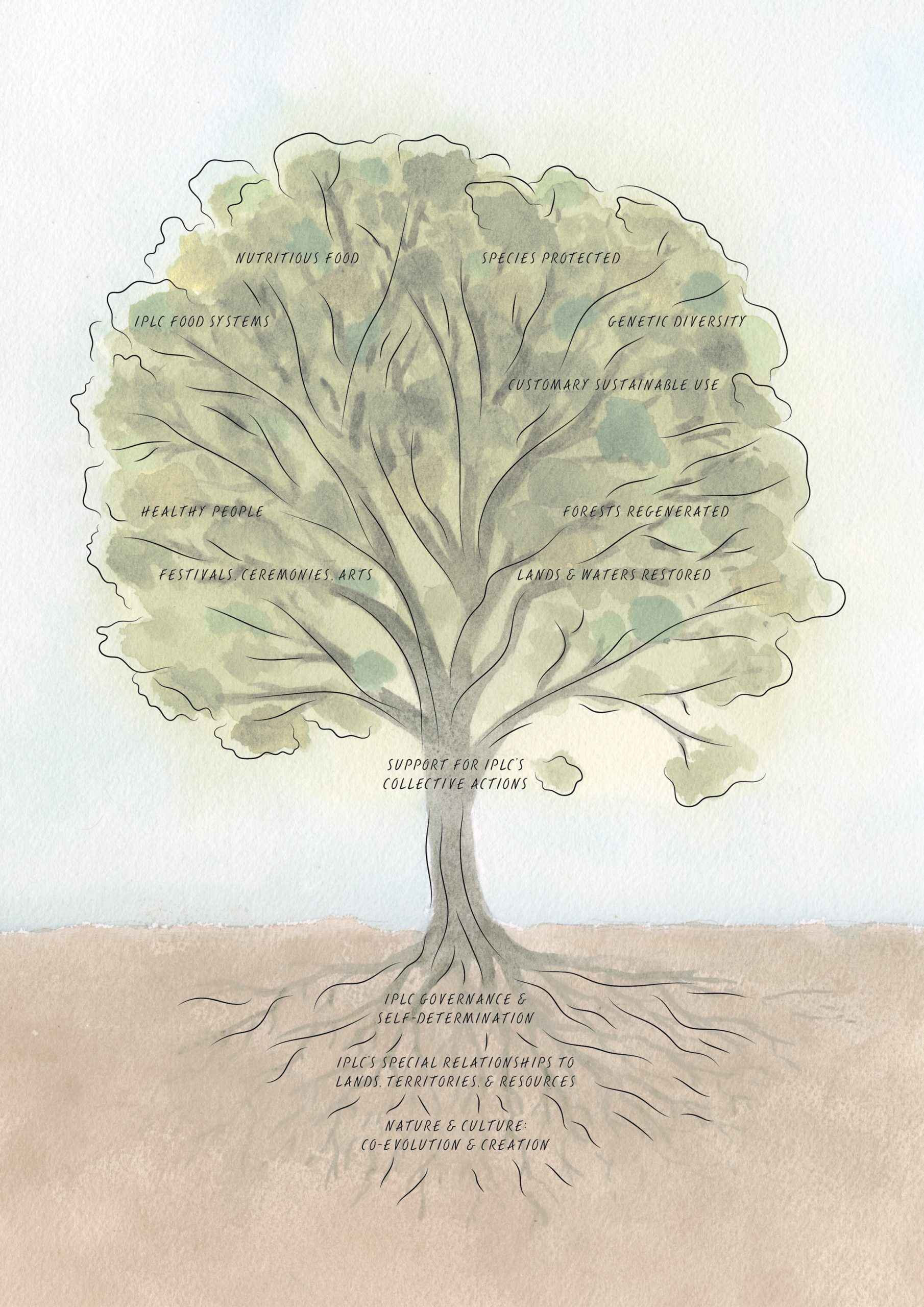 IPLC solution tree for the renewal of nature and cultures. Credit: artwork by Agnès Stienne.