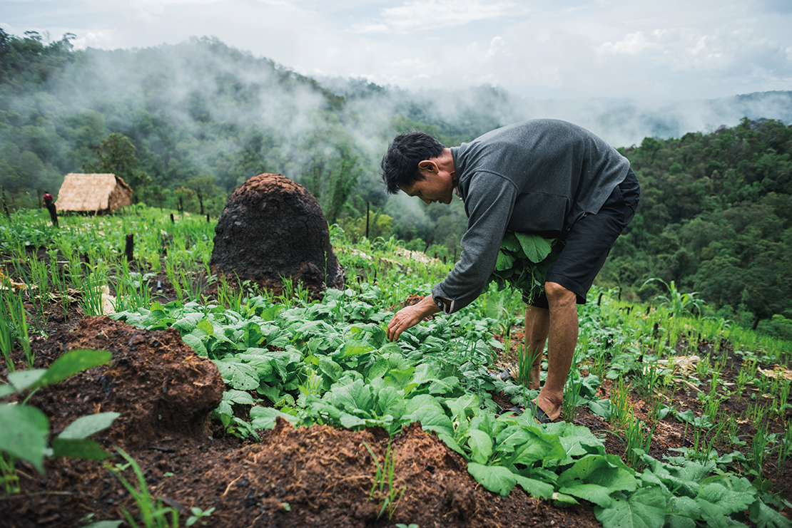 A man practices rotational farming in a Karen community, Thailand. Credit: Chalit Saphaphak.